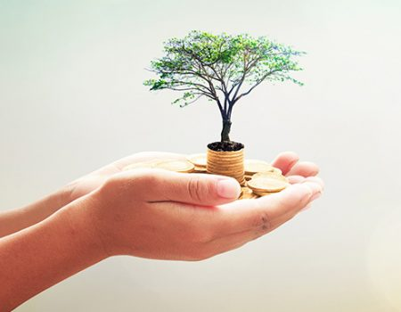 What is an Endowment Fund